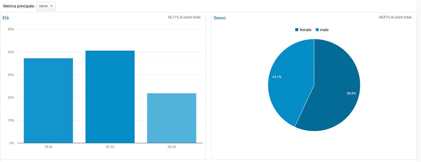 Pubblico/Dati demografici/Panoramica Google Analytics